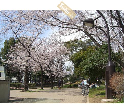 2010_04_12_03_2
