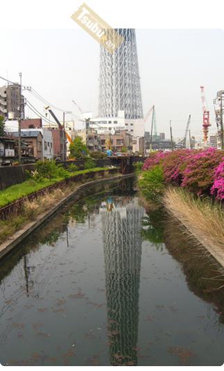 2010_05_05_03_2