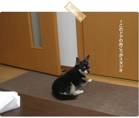 2010_05_24_06_4