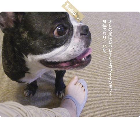 2010_06_04_04_2