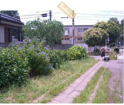 2010_06_14_04